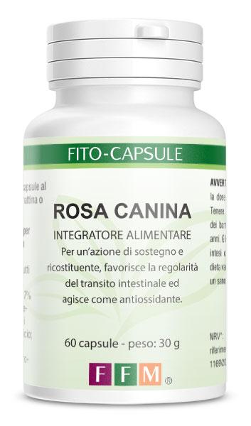 fitocapsule_rosacanina